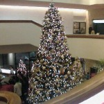 Wordless Wednesday – Beautiful Tree In The Lobby Of The Alley Theatre